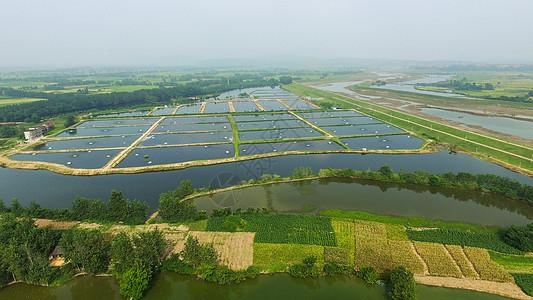 湖南养虾基地图片