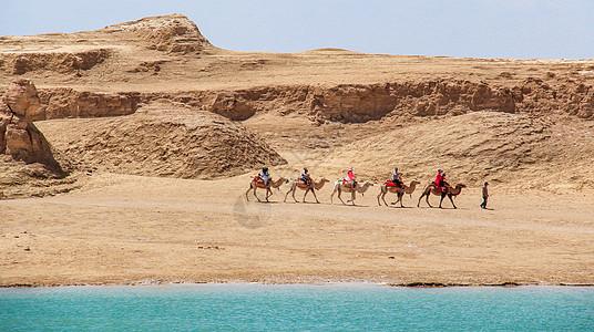 水上雅丹沙漠骆驼队图片
