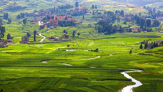 云南曲靖农村田园风光生机盎然图片