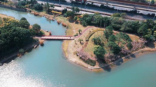 上海美兰湖春天风光图片