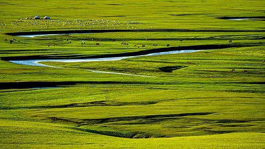 呼伦贝尔大草原莫日格勒河九曲十八弯图片