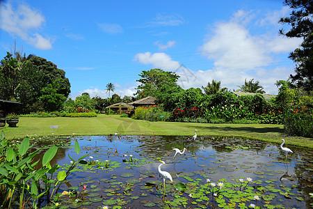 美娜多花园酒店图片