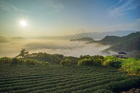 山顶云海日出图片
