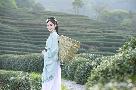 汉服古装美女背茶篓采茶图片