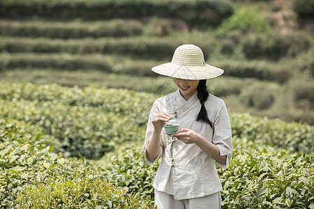 茶园里的采茶姑娘泡茶图片