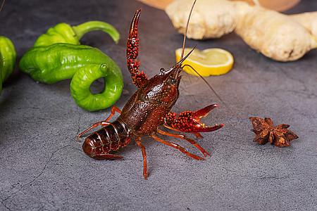 夜宵食材鲜活小龙虾图片