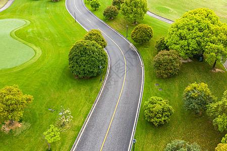 高尔夫球场里的道路图片