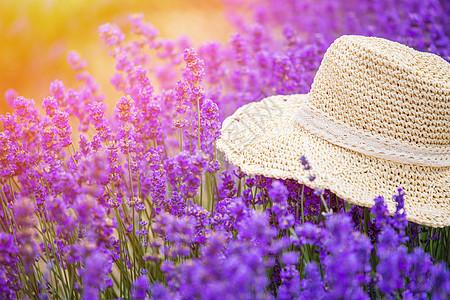 夏日草帽太阳镜图片