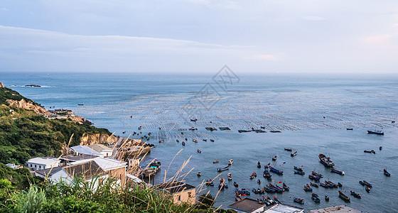 嵊山枸杞岛图片