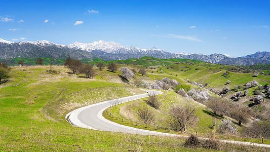 新疆大西沟草原上的道路图片