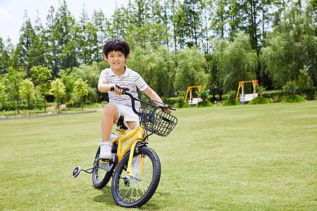 小男孩草坪上骑单车图片