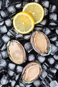 清新海鲜鲍鱼竖版拍摄图片