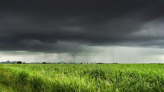 泰国热带暴风雨下的农业农田图片