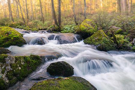 本溪绿石谷溪流图片