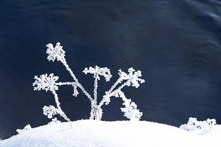 亚龙湾雪玲冬天风光图片