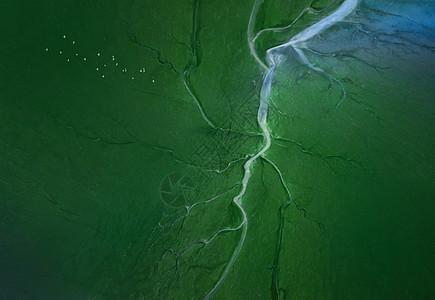 湿地航拍风光图片