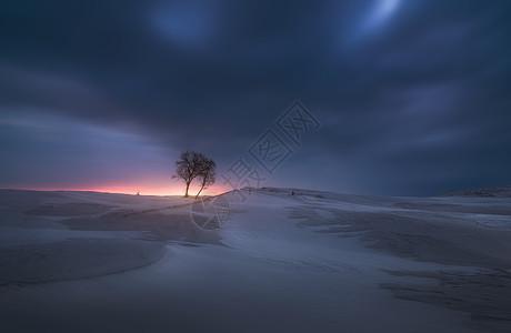 新疆伊犁冬季雪景图片