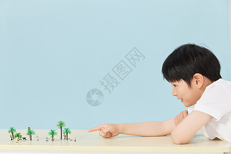 小南在趴在桌子上玩植物模型图片