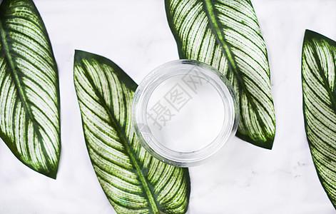 SPA绿叶护肤乳背景素材图片