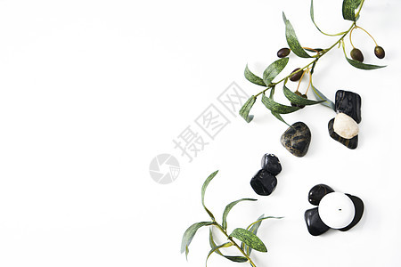 SPA绿叶护肤静物背景素材图片