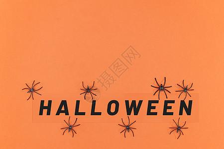 蜘蛛玩具和万圣节英文卡片图片