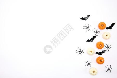 白色背景下的南瓜蜡烛和蝙蝠图片