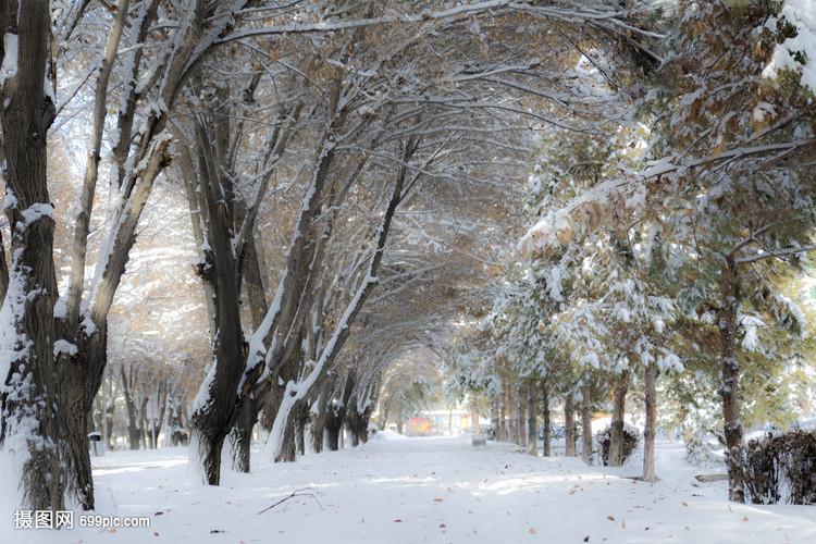 石河子大学雪后风光杭州策地建筑景观设计咨询有限公司图片