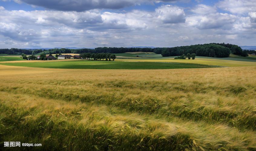 欧洲旅游田园风光绿色麦田视频草地解说口袋妖怪攻略黑图片