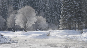 新疆山区冬季河流雾凇