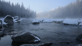 新疆喀纳斯冬季河流雪景