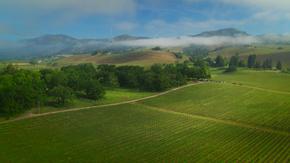 田园耕地航拍