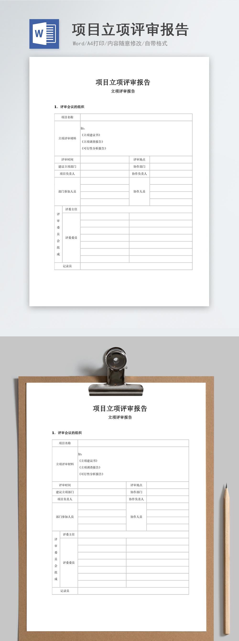 项目立项评审报告(方案)图片