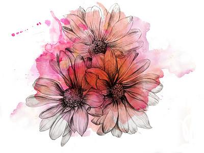 粉色水彩花图片 粉色水彩花素材 粉色水彩花高清图片 摄图网图片下载